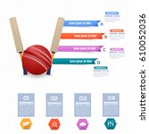 vector cricket ball and bat...   Shutterstock .eps vector #610052036