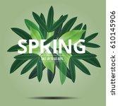 spring lettet green seasaon... | Shutterstock .eps vector #610145906