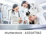 Stock photo cat on examination table of veterinarian clinic with two pet doctors 610167362