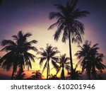 Palm Trees On The Background O...