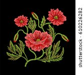 embroidery stitches with red... | Shutterstock .eps vector #610226282