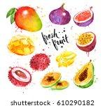 hand painted watercolor... | Shutterstock . vector #610290182