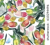 Watercolor Tulips Flowers Wit...