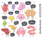 vector set of human internal... | Shutterstock .eps vector #610310198