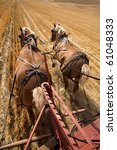 Two Draft Horses Working At...