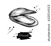mussel hand drawn vector... | Shutterstock .eps vector #610514315