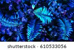 tropical leaf forest glow in... | Shutterstock . vector #610533056