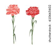 Abstract Two Carnations Of Red...