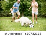 Stock photo family plays soccer with dog and have fun in summer 610732118