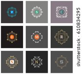 the letters t  r  s  m  v  n  e ... | Shutterstock .eps vector #610834295