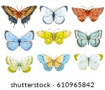 Stock photo set of beautiful watercolor butterflies blue yellow and red butterfly illustration 610965842