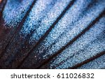 wings of butterflies at high... | Shutterstock . vector #611026832