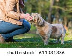 picture of a young woman giving ... | Shutterstock . vector #611031386