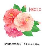 Set Of Multicolored Hibiscus...