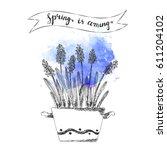 hand drawn line art pot... | Shutterstock .eps vector #611204102