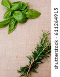 sprigs of rosemary and basil on ... | Shutterstock . vector #611264915