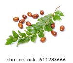 jujube or chinese date on white ... | Shutterstock . vector #611288666