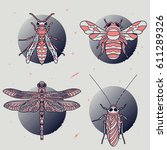 set of thin line insects labels.... | Shutterstock .eps vector #611289326
