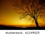 Silhouette Tree At Sunset On...