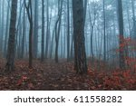 misty forest  magical misty... | Shutterstock . vector #611558282