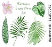 watercolor exotic leaves pattern | Shutterstock . vector #611577092