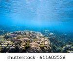 underwater landscape with coral ... | Shutterstock . vector #611602526