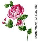 baroque rose flower element... | Shutterstock .eps vector #611609402