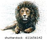 lion  | Shutterstock . vector #611656142