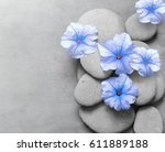 spa concept with blue flower... | Shutterstock . vector #611889188