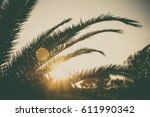 palm branches or palm leaves at ... | Shutterstock . vector #611990342