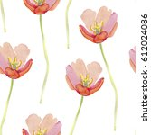 watercolor poppies seamless... | Shutterstock . vector #612024086