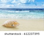 pearl in open shell.  | Shutterstock . vector #612237395