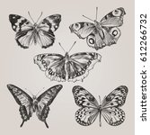 set of hand drawn butterflies... | Shutterstock .eps vector #612266732