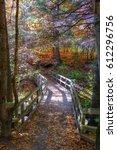 autumn scene   Shutterstock . vector #612296756