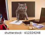 Stock photo cat businessman at a table near the laptop with glasses 612324248
