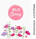 hand drawn spring flowers.... | Shutterstock .eps vector #612335666