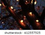 Photo Of Christmas Lights On A...