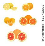 citrus. set of fruit. fresh... | Shutterstock .eps vector #612713072