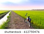 Small photo of A fold-able bicycle in the farm of jasmine rice at the time of sunset with beautiful color of sky.