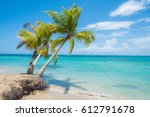 Stock photo palm trees at a beach in samana dominican republic 612791678