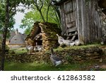 grey foie gras geese walking to ... | Shutterstock . vector #612863582