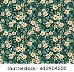 floral pattern. pretty flowers... | Shutterstock .eps vector #612904202