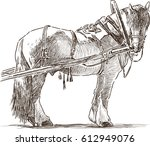 Sketch Of A Harnessed Workhorse