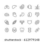 simple set of internal organs... | Shutterstock .eps vector #612979148