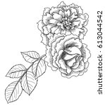 hand drawn and sketch design... | Shutterstock .eps vector #613044542
