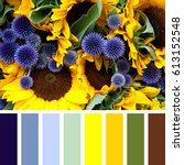 closeup or sunflowers and... | Shutterstock . vector #613152548