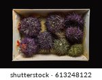 Seafood Sea Urchin In A Package ...