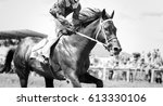 Stock photo racing horse portrait in action 613330106