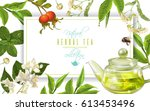 vector herbal tea frame with... | Shutterstock .eps vector #613453496
