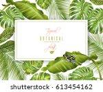 vector tropical horizontal... | Shutterstock .eps vector #613454162